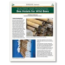 Building and Managing Bee Hotels for Wild Bees - shop.msu.edu