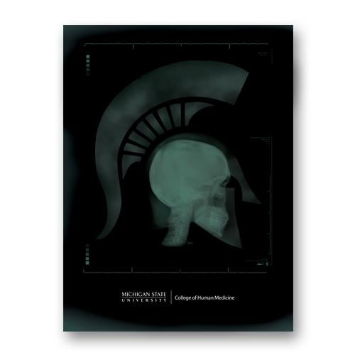 College of Human Medicine MD Sparty Poster - shop.msu.edu