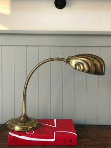 Brass Clam Shell Lamp