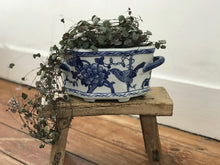 Load image into Gallery viewer, Jardiniere Ceramic Planter