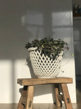 Load image into Gallery viewer, Vintage Italian Woven Basket