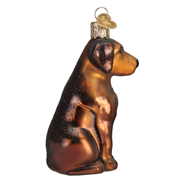 Chocolate Lab Ornament