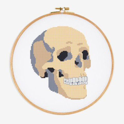Skull cross stitch pattern by DMC