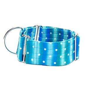 "Blue Stripes with Spots 2"" Collar"