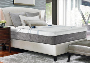 "Queen Size Thomasville® Eclipse 6-Chamber 12"" Number Bed"