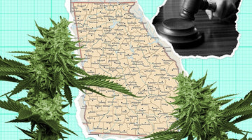 The Georgia Medical Cannabis Legislative Roll Out