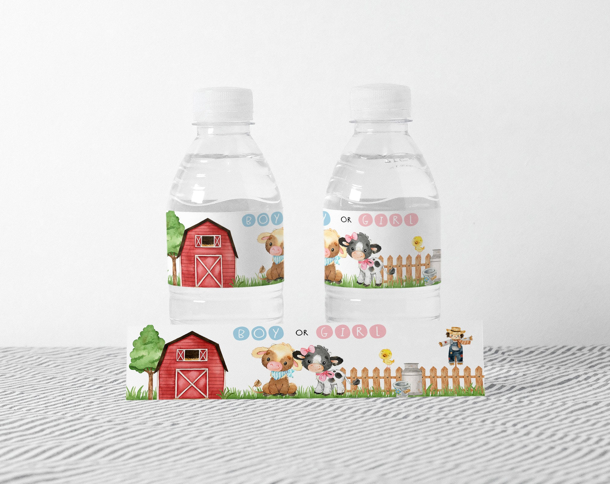 Farm Boy or Girl Water Bottle Labels | Cow Themed Gender Reveal Decorations - 11D