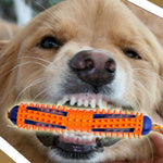 2-in-1 Toothbrush Chew Toy for Dogs