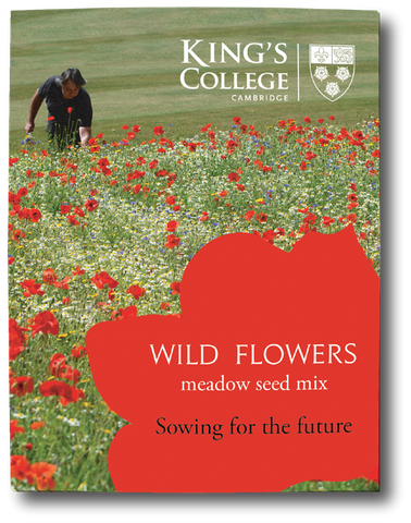 King's College Wildflower Meadow Seed Mix