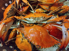 Load image into Gallery viewer, Half Bushel Medium Steamed Male Crabs