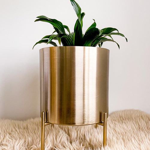 large 32cm gold planter on stand price & coco interiors