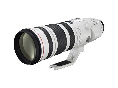 Canon EF 200-400mm f/4L IS USM Extender 1.4x - International Version (No Warranty)