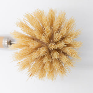 Agave Fiber Dish Brush