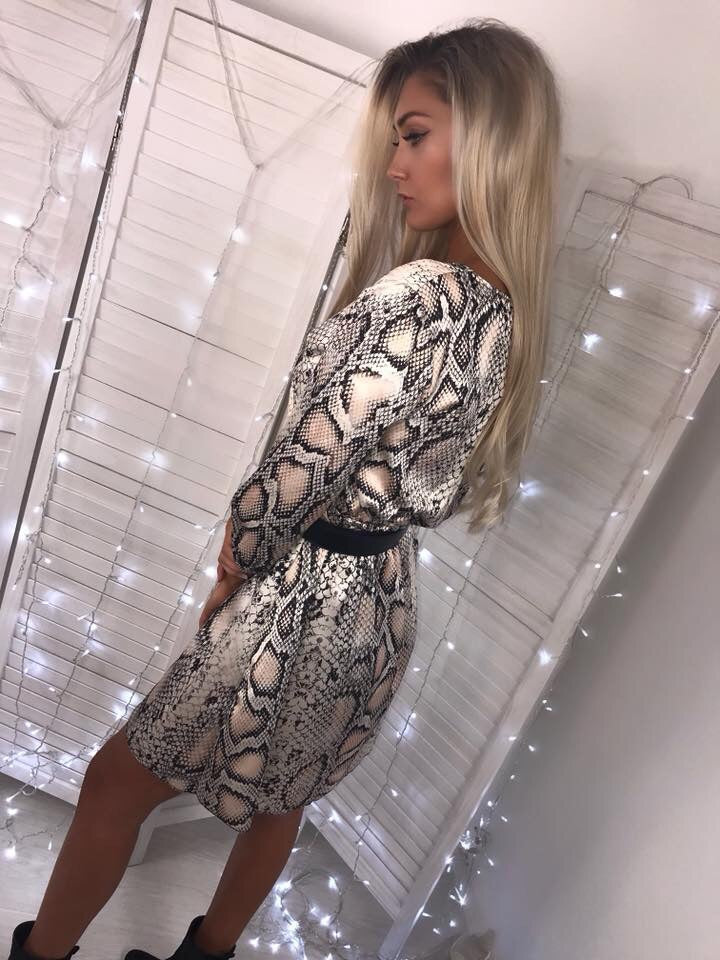 'Savannah' Satin Snake Print Button V-Neck Dress