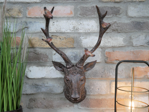Stag Wall Bust with Sitting Birds