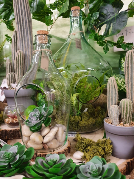 Demi-John Terrarium - Various Sizes