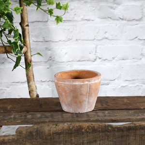 Rustic Terracotta Shorty Planter - Various Sizes