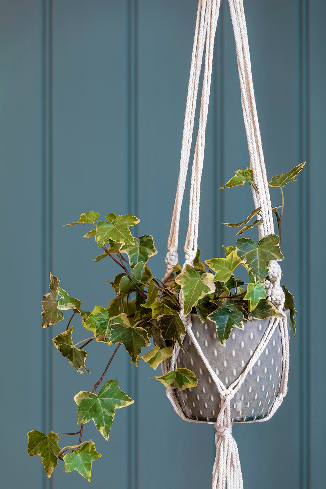 Macrame Grey Hanging Planter - Ø10.5cm