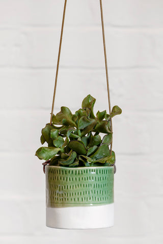 Green Pie Crust Hanging Planter - Ø8.5cm