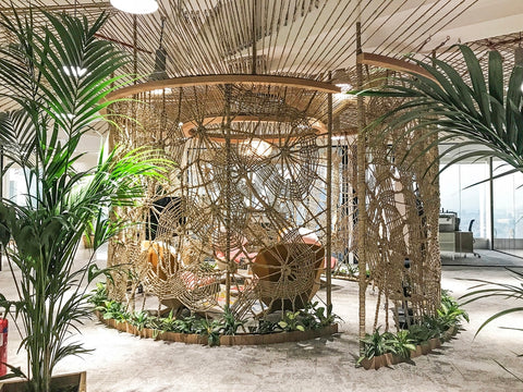 Biophilia Trend | Commercial Interior Design