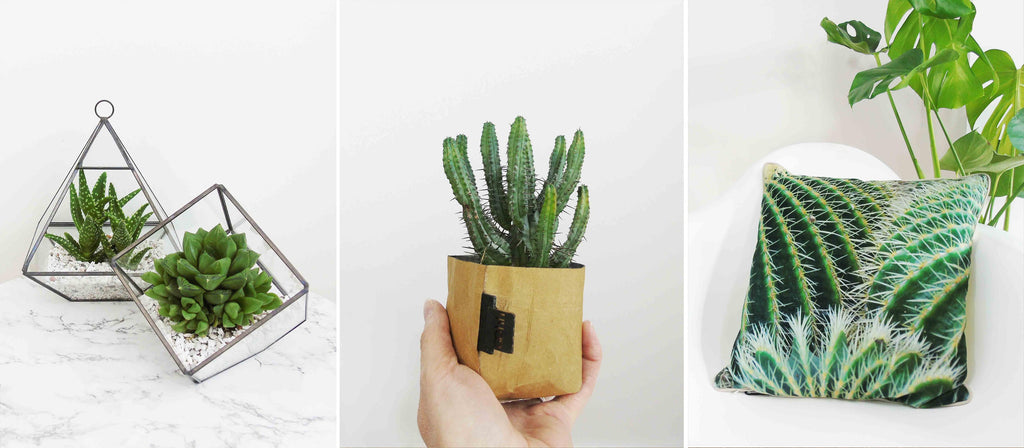 Gifts For Green Fingers | Christmas Gift Guide | The Den & Now