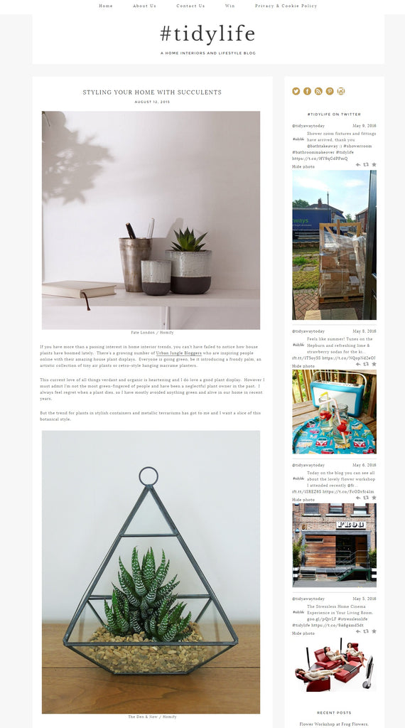 Tidy Away Today Blog | Styling Your Home With Succulents | Glass Pyramid Terrarium | The Den & Now