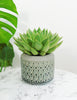 Ceramic Retro Planter