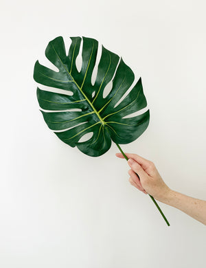 Faux Monstera 'Cheese Plant' Leaf