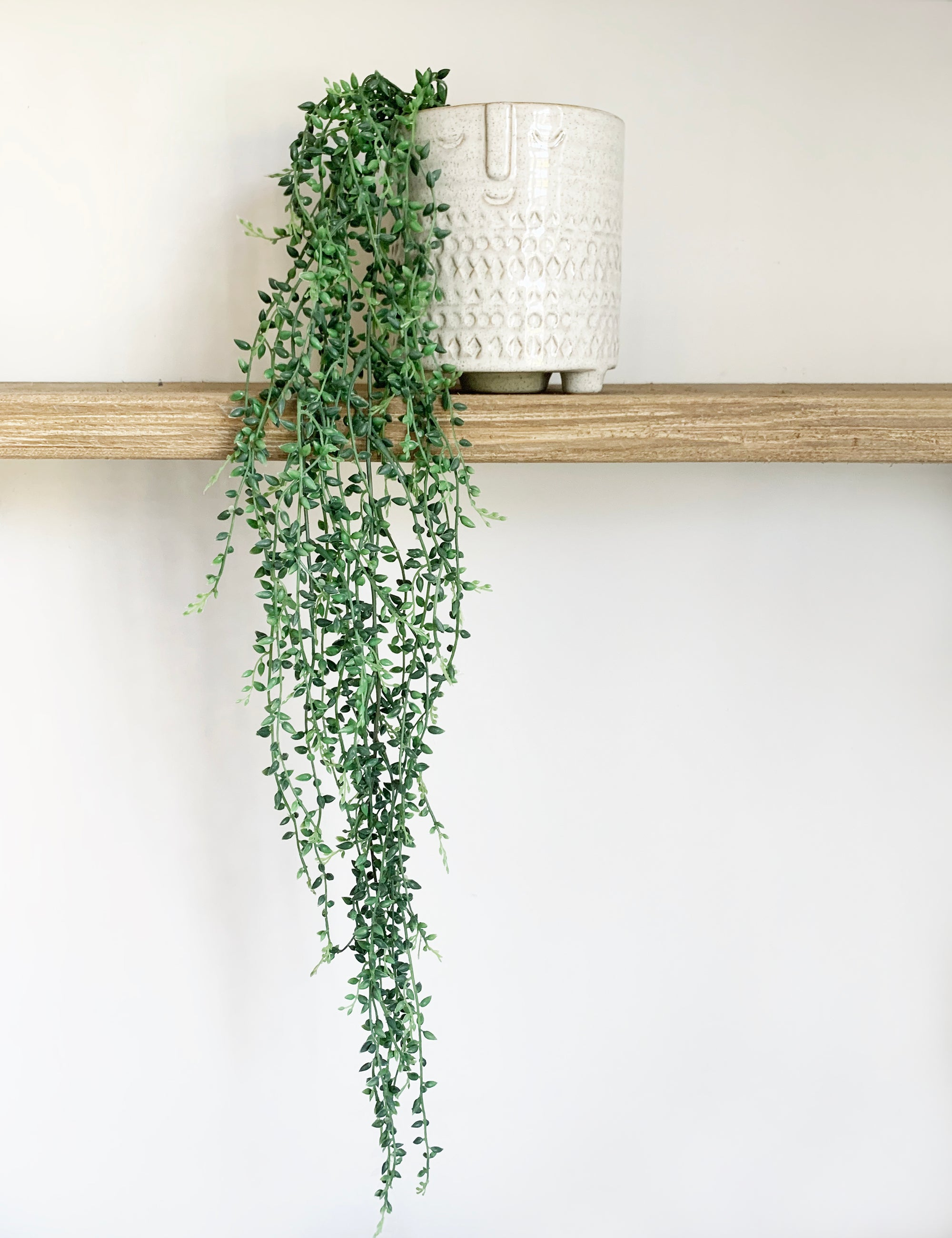 Faux String of Beads Plant
