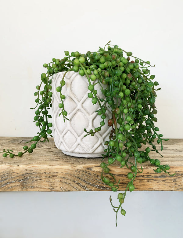 Faux String of Pearls Potted Plant