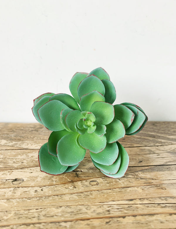 Faux Lotus Green Succulent