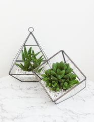 Pyramid and Cube Glass Terrariums | The Den & Now