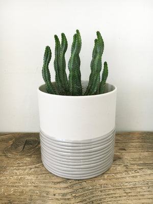 Grey Can Planter