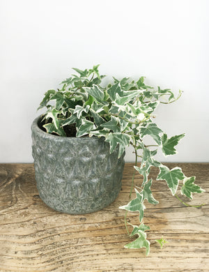 Grey Embossed Stoneware Planter