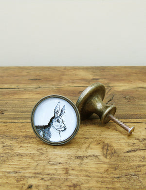 Hare Illustrated Drawer Knob
