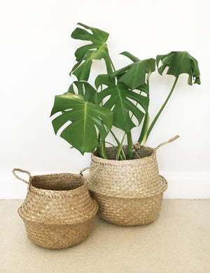Seagrass Storage Basket - pair