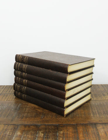 Vintage Books (set of six)