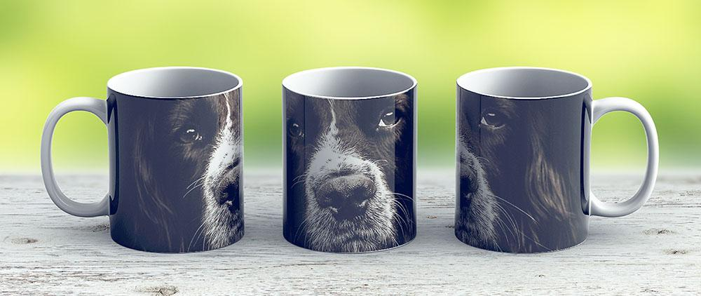 English Springer Spaniel - Ceramic Coffee Mug - Gift Idea For Family And Friends