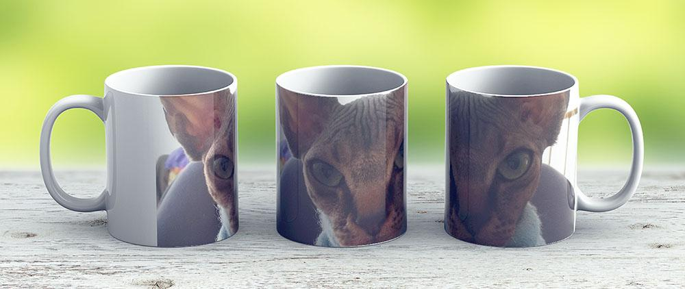 Sphynx Cat Bigmouth - Ceramic Coffee Mug - Gift Idea For Family And Friends