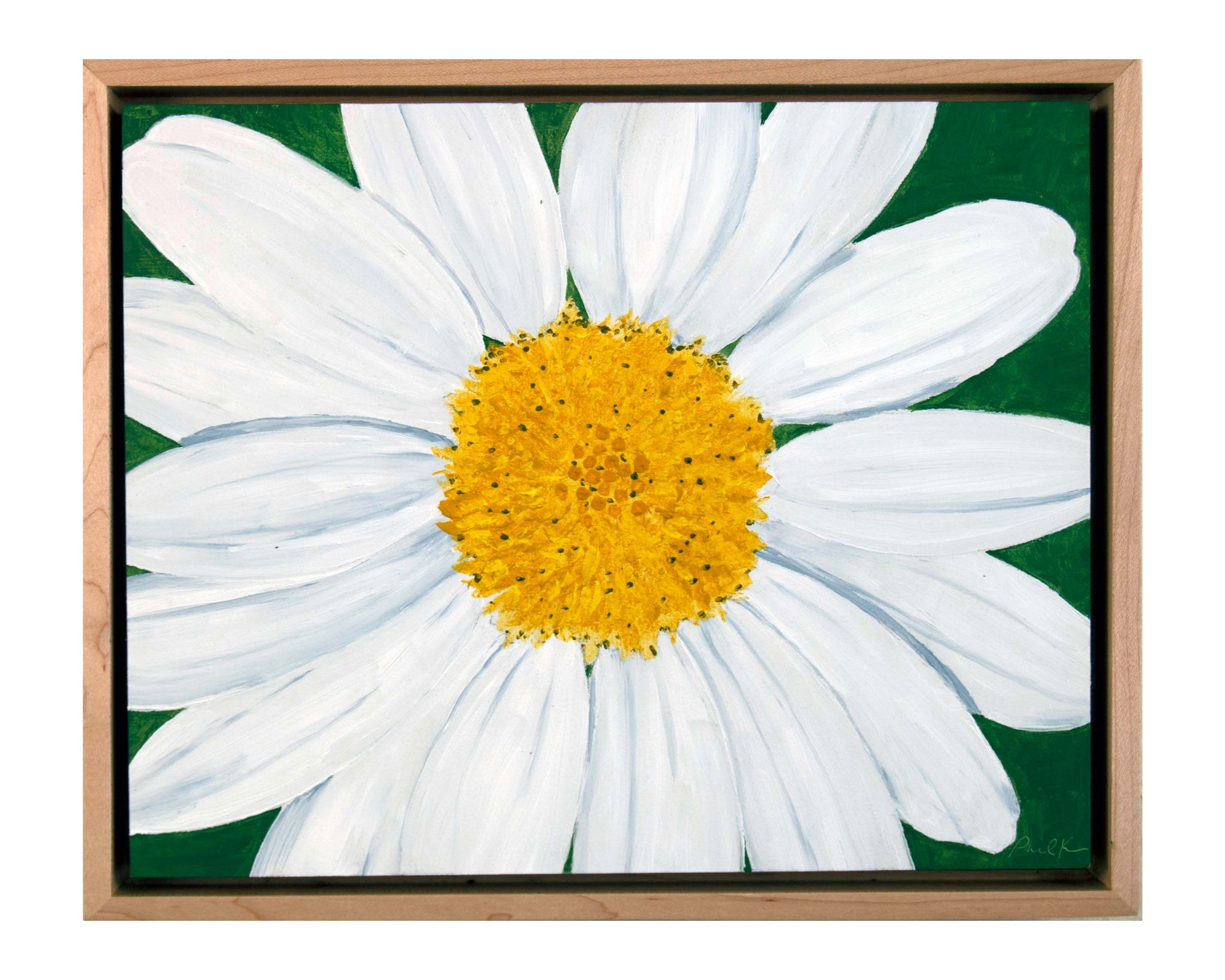 Daisies (Sold as a Set of Two) - Daisy