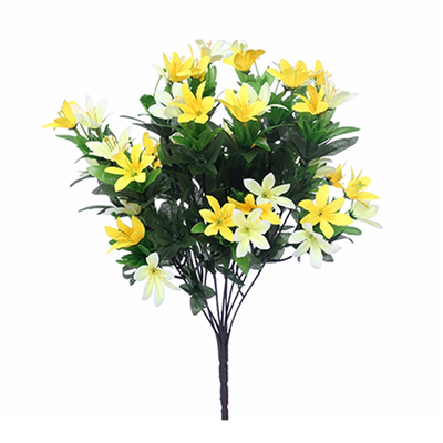 Wild Lily Bush - 40cm (Yellow/Lemon)