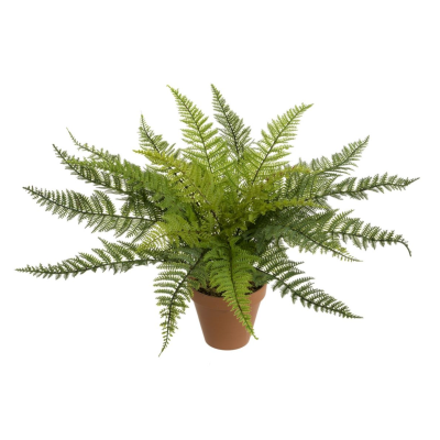 Potted Fern Bush - 53cm