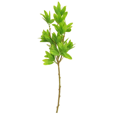 Light Green Bay Leaf Spray - 56cm