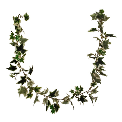 6ft Premium Variegated Ivy Garland