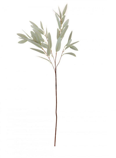 Nobel Leaf Stem - 90cm (Pale Green)
