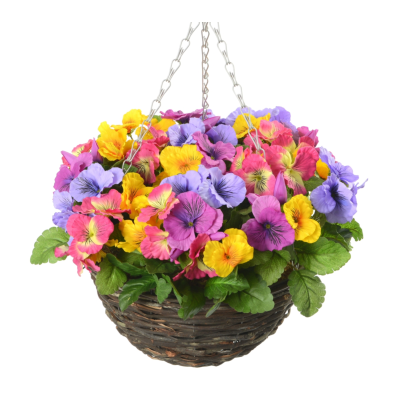 Pansy Hanging Basket - Mixed Colour