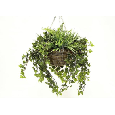 Large Mixed Foliage Hanging Basket