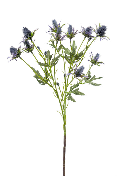 Eryngium Spray - 68cm (Blue)