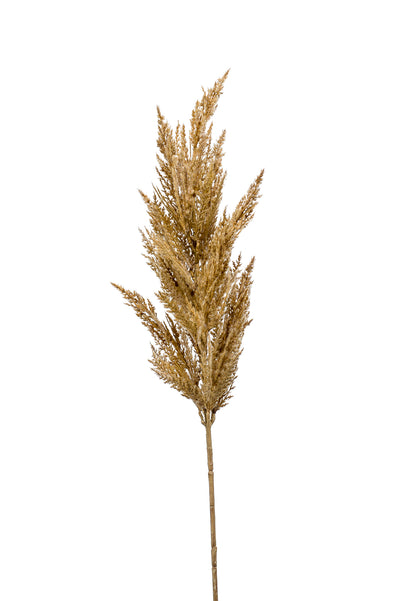 Pampas Grass Spray - 92cm (Beige)