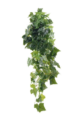 Large English Ivy Swag - 1.1m